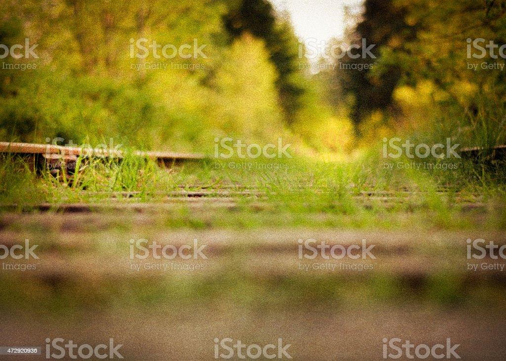 Old Railway Tracks stock photo