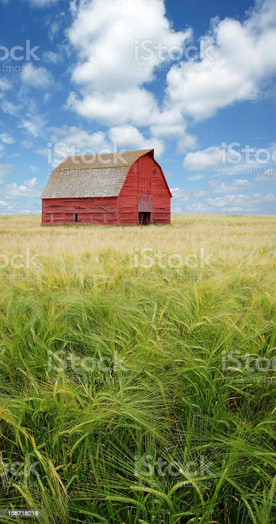 XXXL old red barn royalty-free stock photo