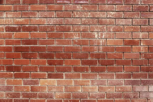 오래된 붉은 벽돌 벽을 배경으로 - 벽돌 담 뉴스 사진 이미지