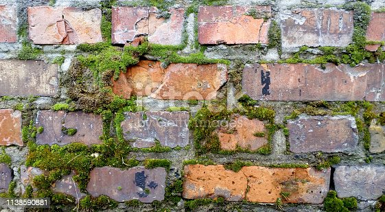Old red brick wall. Moss texture. Demage bricks background.