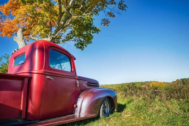 alte rote bauernhof lkw unter herbst baum geparkt - alte wagen stock-fotos und bilder