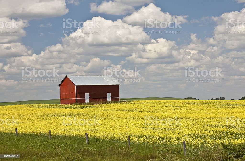 Old Red Shed on the Great Plains royalty-free stock photo