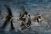 Old ripped jeans background. A detailed shot of a fragment of denim with holes. Creative background for various design tasks. Copy space.