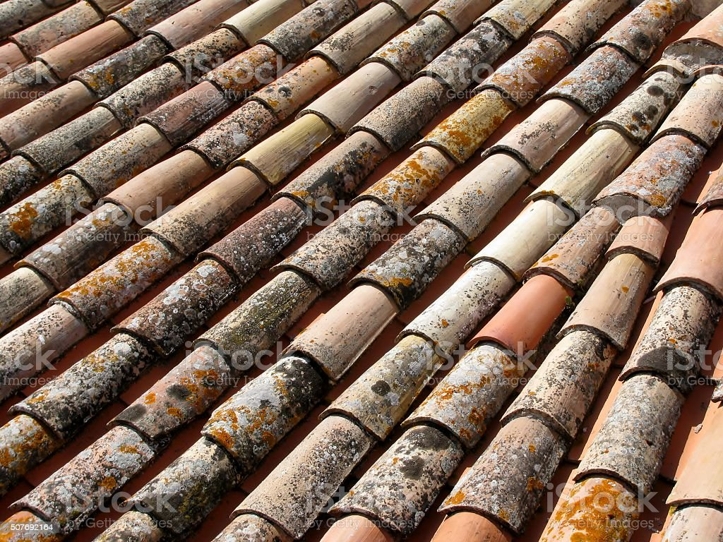 old roof tiles with mold and mildew stock photo