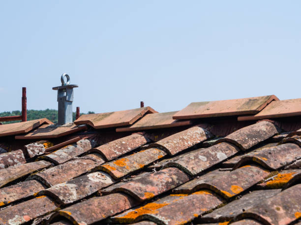 Old roof with anti-fall system - foto stock