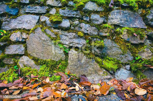 Old rough stone wall with moss