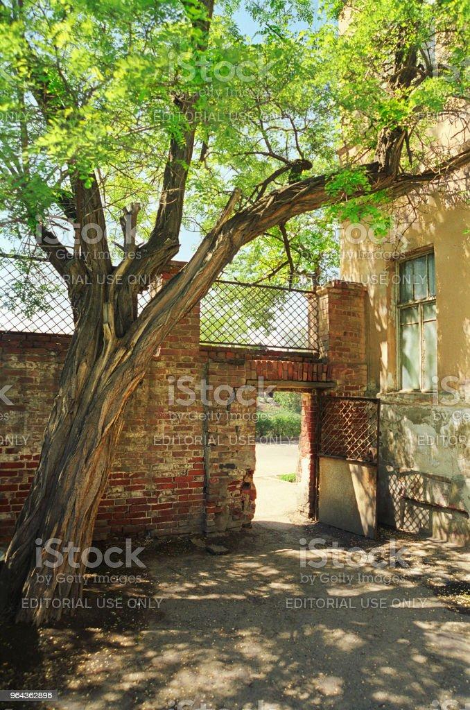 Oude Russische binnenplaats in de oude stad van Astrachan, Rusland - Royalty-free Acacia Stockfoto