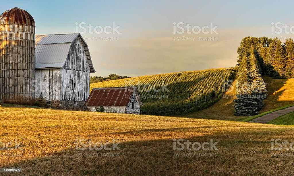 Old rustic barn and silo in sunset royalty-free stock photo