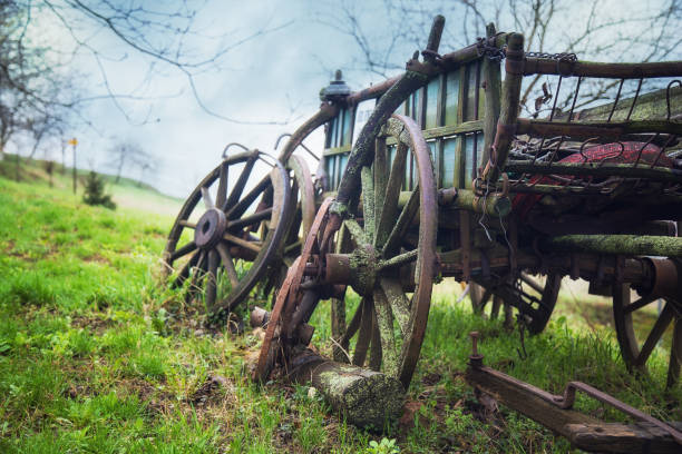 Old rustic disabled wagon lying in the fields stock photo