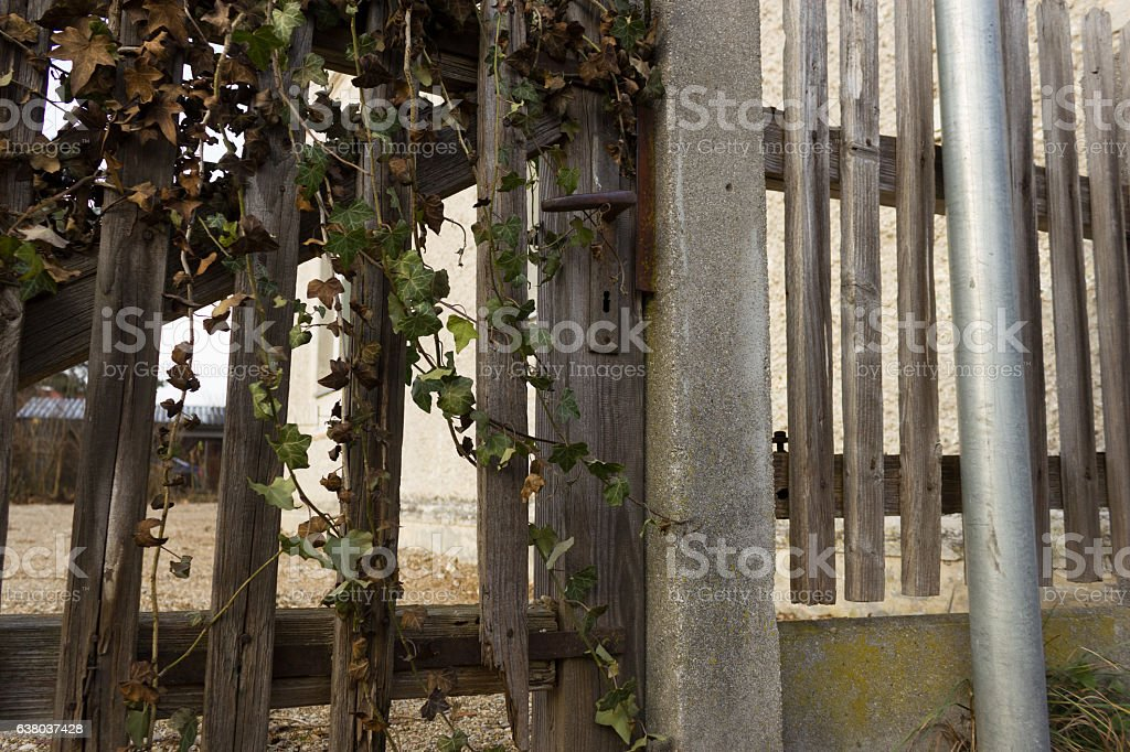 Old Rustic Garden Gate Royalty Free Stock Photo