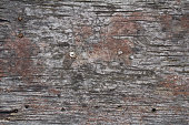istock old rustic gray wood surface background 1014850666