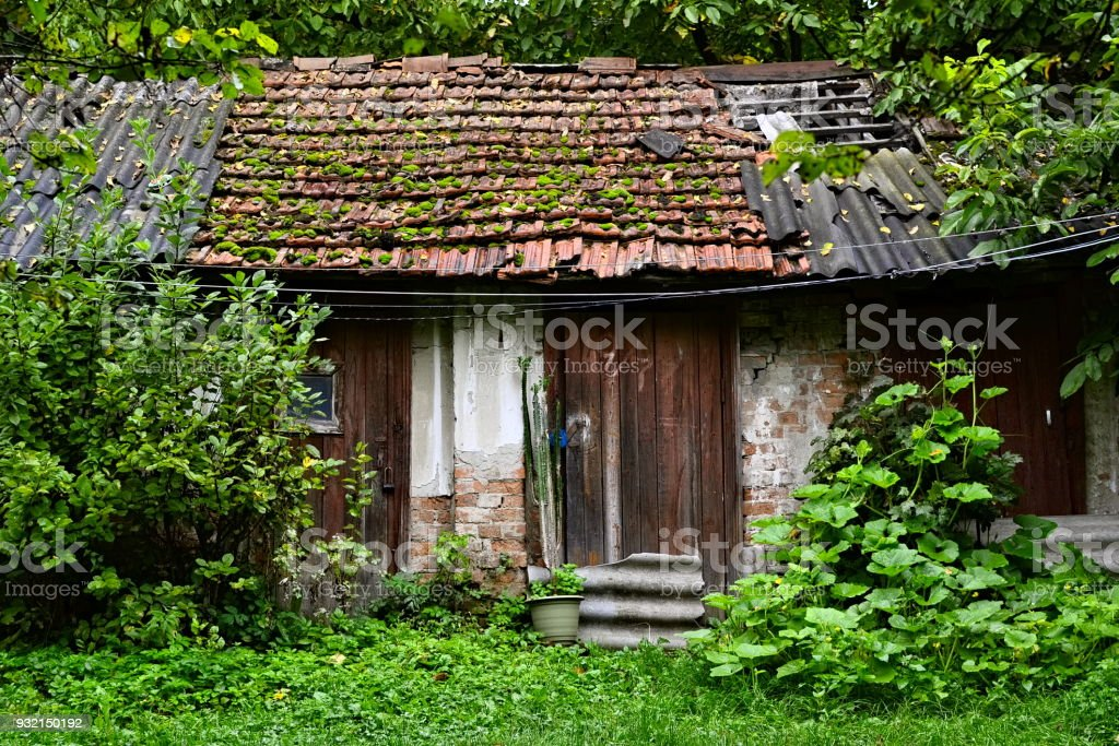 Old rustic shabby small shed in grass and woods stock photo