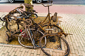 istock Old rusty abandoned bikes at a tree near a street in Amsterdam, Netherlands 1167360042