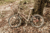 istock Old rusty child's bicycle by a tree 503664970