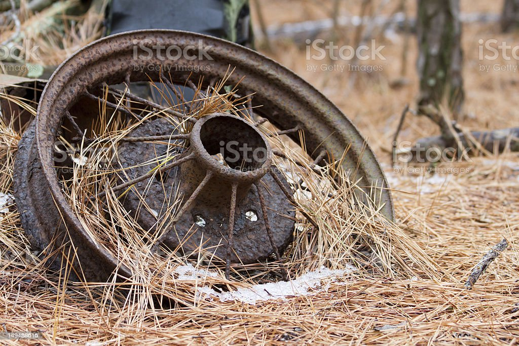 Old rusty, pine needle covered wheel lies in the forest. royalty-free stock photo