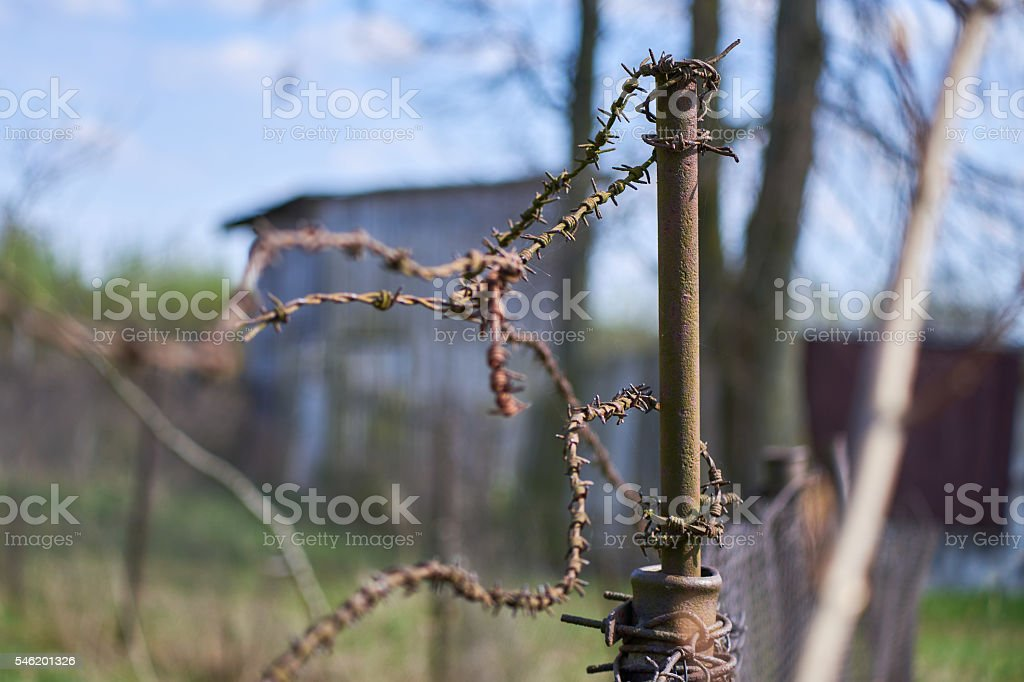 Old rusty post with barbed wire stock photo