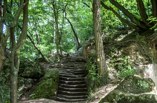istock old sandstone stairs with rocks in deciduous forest 868692468