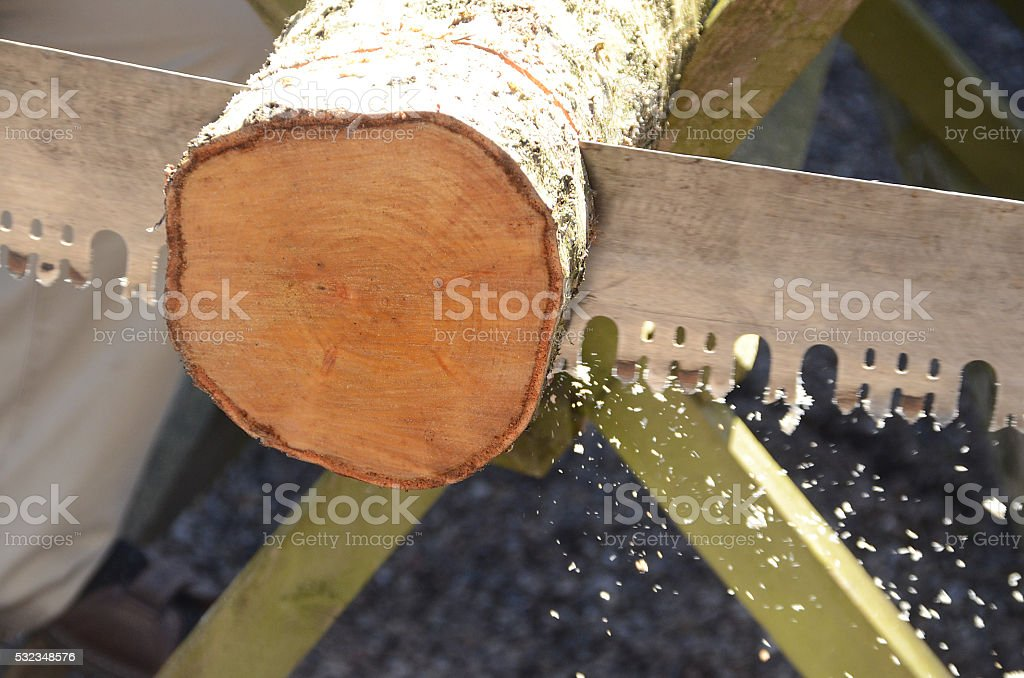 Old Saw stock photo