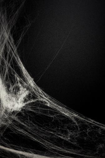 Cobbwebs on a blackboard