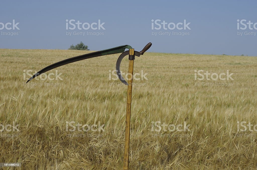 Old Scythe And Sickle Stock Photo - Download Image Now - iStock