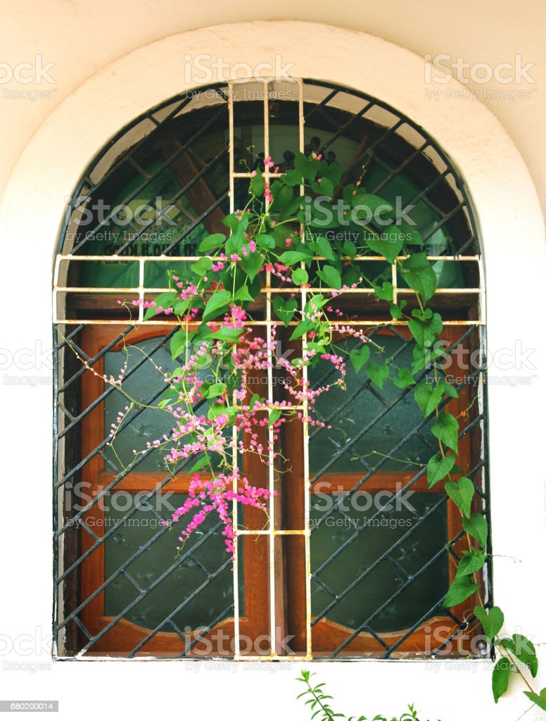 old semicircular window of church with flowers in goa, india. stock photo