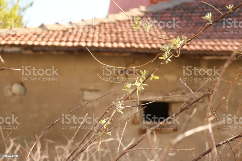 Old Settlement stock photo