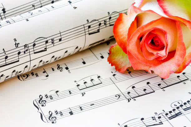 Old sheet music with rose alf background stock photo