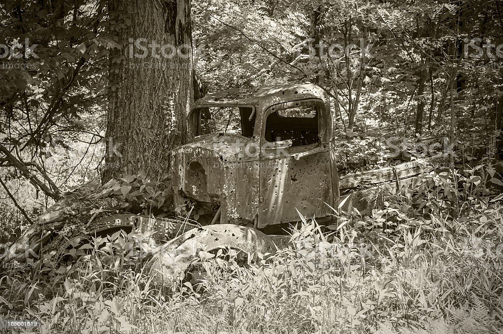 Old shot-up truck in woods stock photo