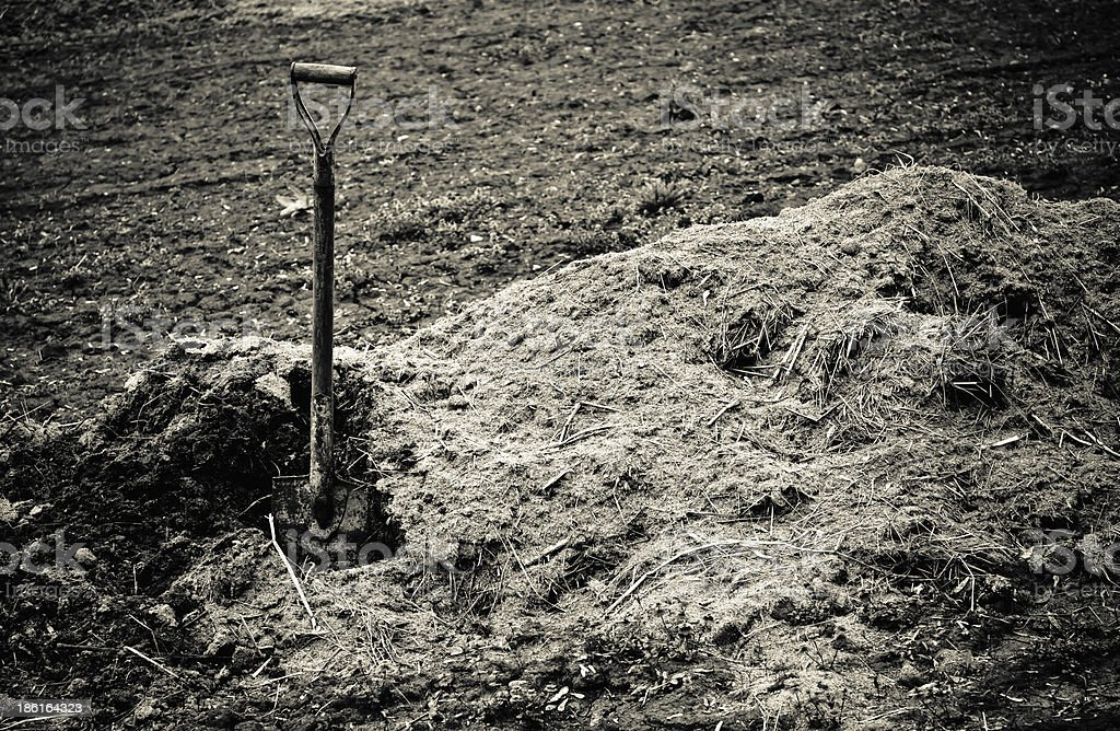Old shovel sticks up in pile of earth. Sepia toned stock photo