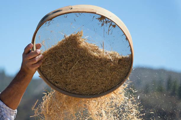 alten sieb für das sieben von mehl und weizen, siebt landwirt getreide - puderzuckersieb stock-fotos und bilder