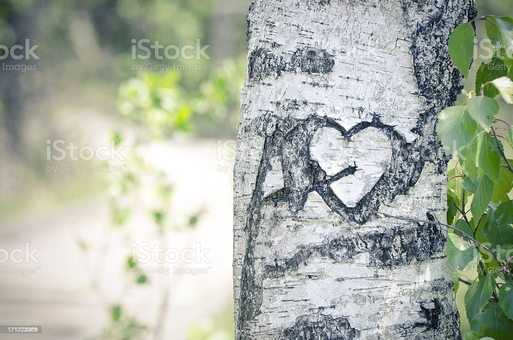 Old signature of love in a tree stock photo