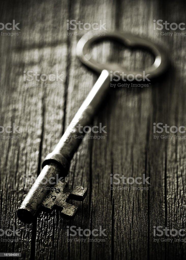 Old Skeleton Key stock photo