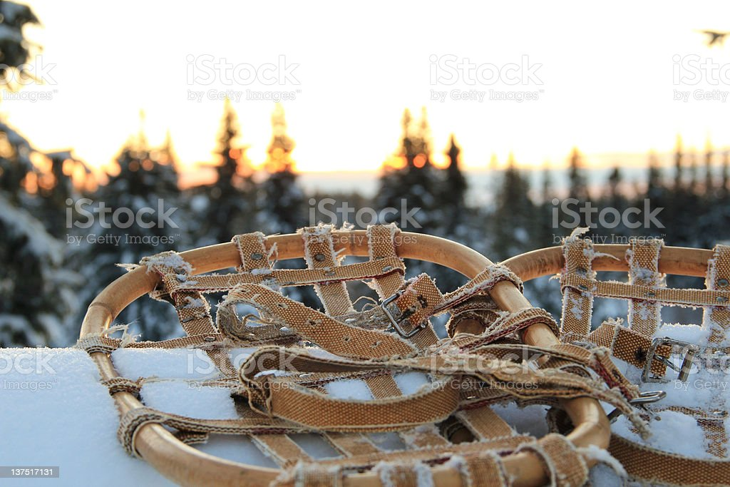 Old snowshoes royalty-free stock photo
