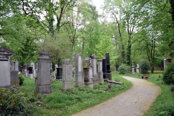alten südlichen friedhof (alter sudfriedhof). münchen, deutschland. - münchen weather stock-fotos und bilder