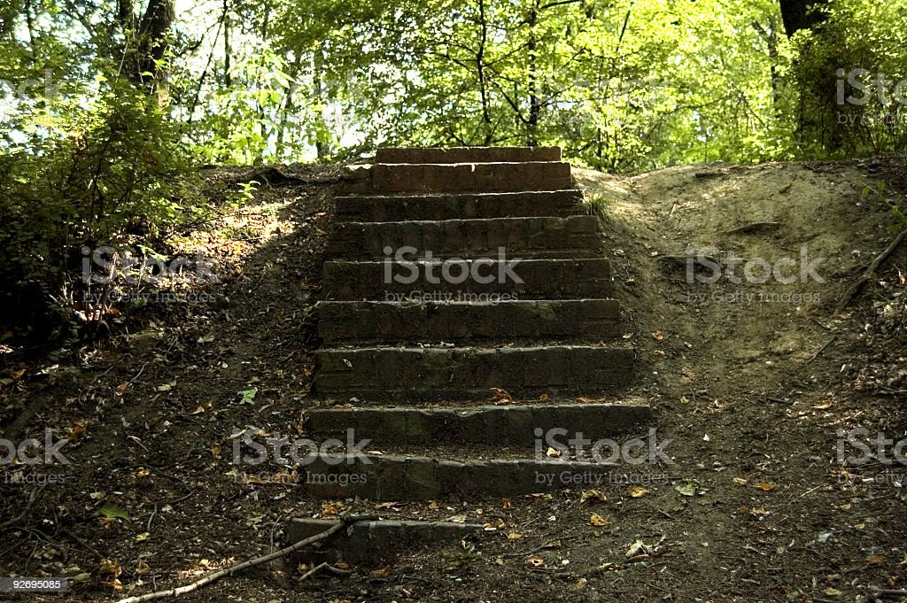 Old stairs in forest royalty-free stock photo
