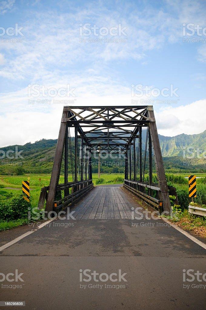 Old steel bridge (Hanalei, Kauai) stock photo