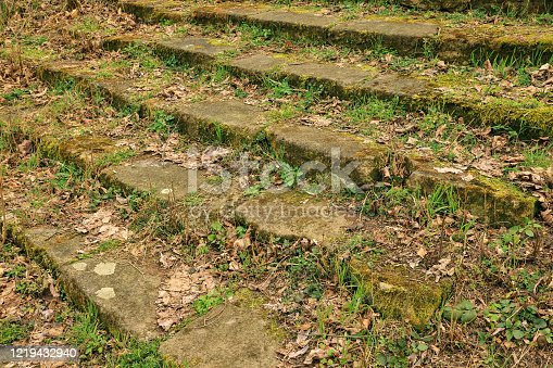 istock Old steps overgrown with moss and grass 1219432940
