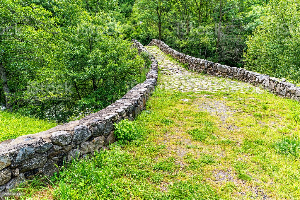 Old Stone bridge over the river in summer forest. royalty-free stock photo