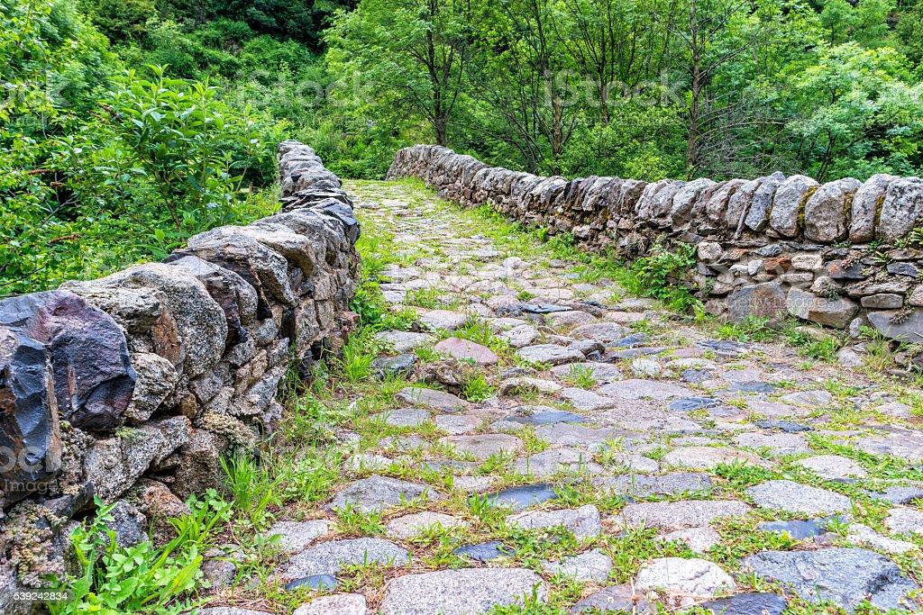 viejo puente de piedra sobre el río en verano bosque. foto de stock libre de derechos