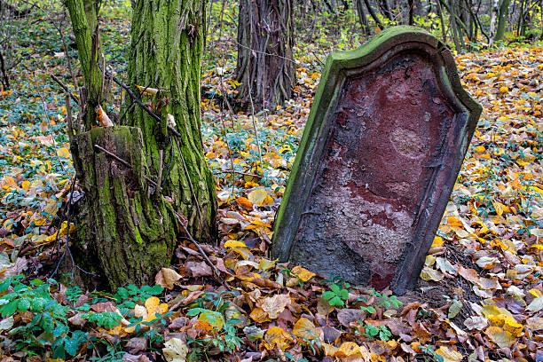 old stone cross im herbst laub - waldfriedhof stock-fotos und bilder