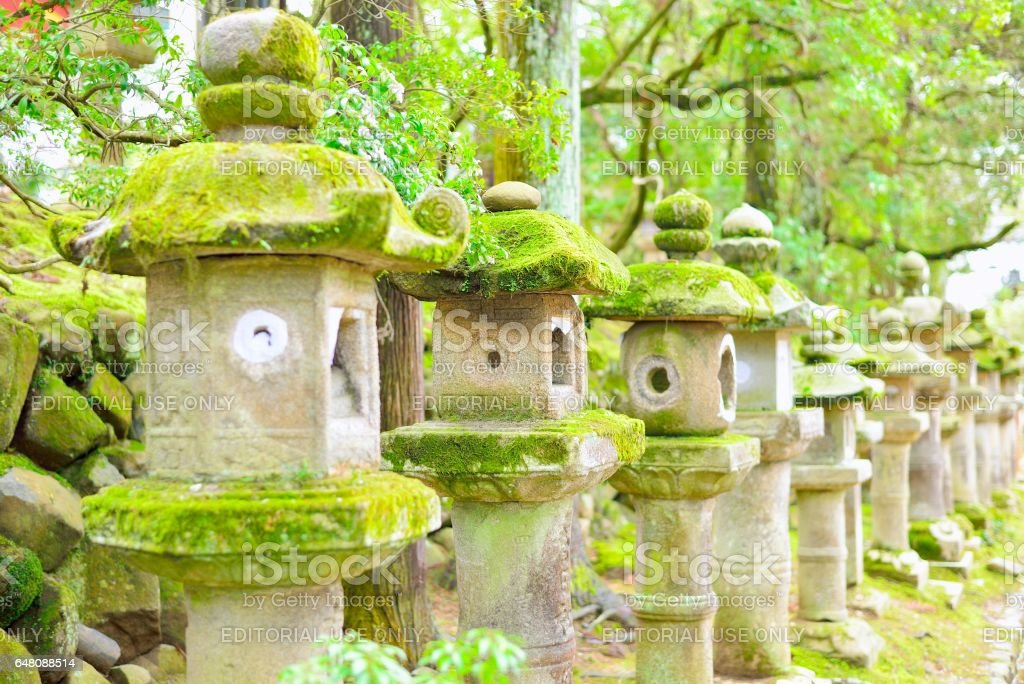 Old stone lanterns in Nara. Selective focus. stock photo