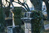 Piegon, France - December 22, 2020. View of old stone pillars covered with ivy during the sunset in Provence