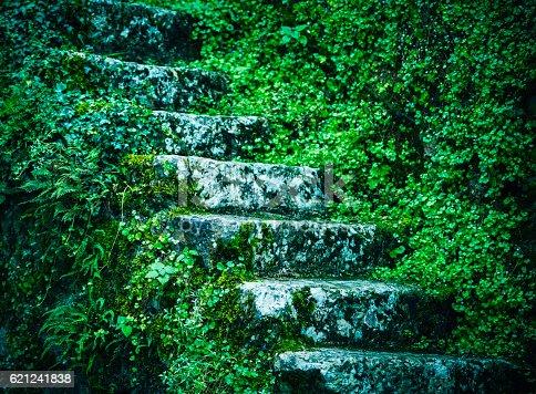 old stairs in Hallstatt, Austria