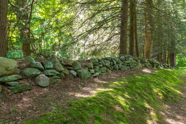 Old stone wall and moss stock photo