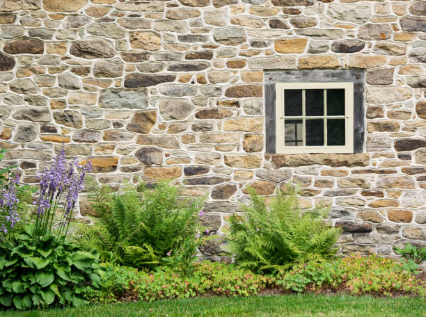 Old Stone Wall and Rustic Window with Purple Hosta Flowers stock photo