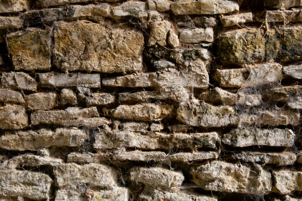Old Stone Wall with Spider Webs stock photo