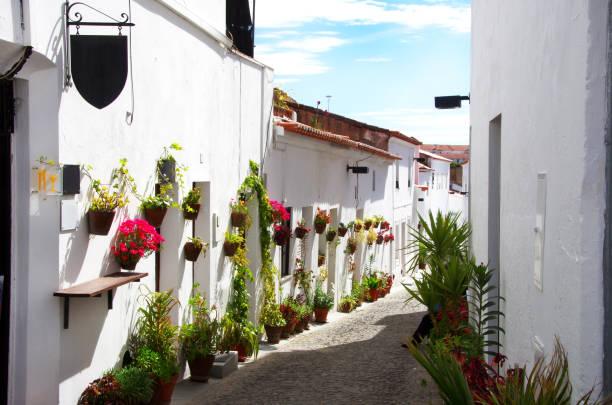 古い通りの花、モウラ (ポルトガル) - ムーア様式 ストックフォトと画像