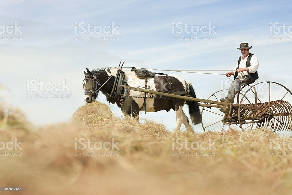 old style harvest royalty-free stock photo
