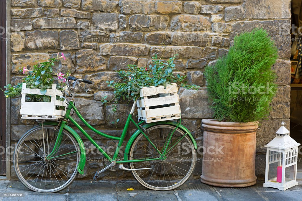 Old styled Bicycle in green with box of Mandevilla flower stock photo