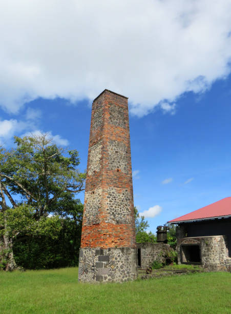 Old sugar mill chimney in sugarcane plantation. Tropical construction. Old sugar mill chimney in sugarcane plantation. Tropical construction. miller park stock pictures, royalty-free photos & images